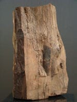 Women Body Wood Sculpture | Ronald M. Friedman